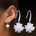 Unique Alliage Cristal Dames Boucles d'oreille de mode