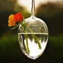 Water Drop Shaped Glass Vase