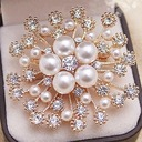 Hottest Alloy/Rhinestones/Imitation Pearls With Rhinestone Ladies' Brooch