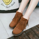 Women's Suede Chunky Heel Pumps Boots Ankle Boots With Tassel Elastic Band shoes