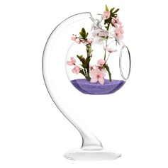Glass Vase Decorative Accessories