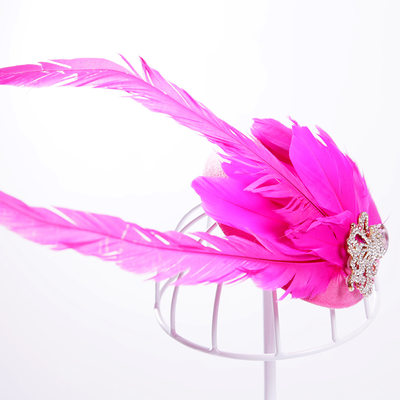 Ladies Elegant Rhinestone/Alloy/Feather Flowers & Feathers